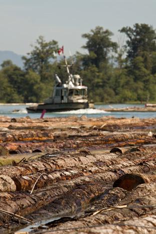 Log Storage and Handling